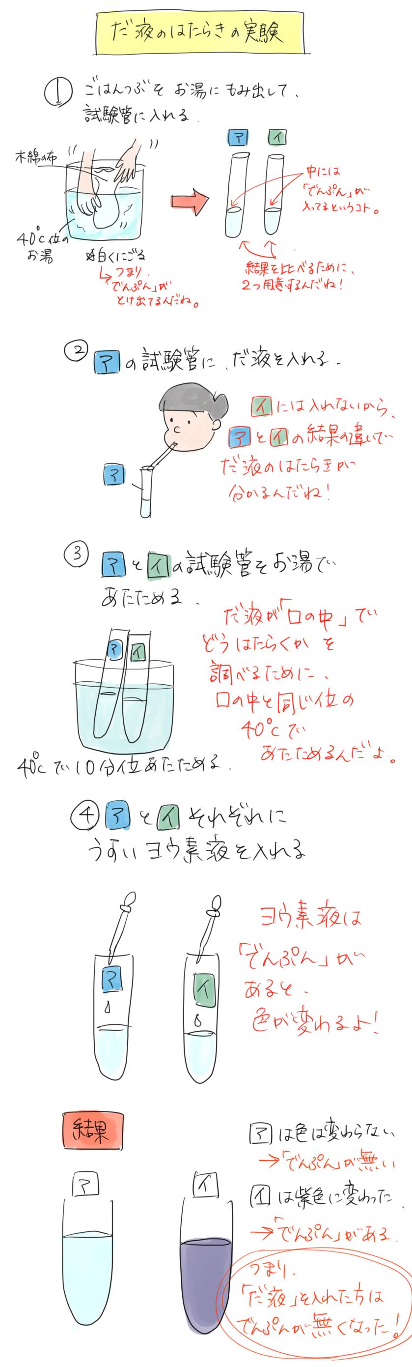 だ液のはたらきの実験のイラスト