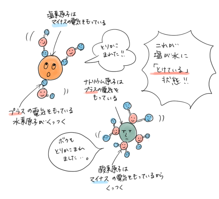 物を作っている原子のまわりを、水の分子が取り囲んでいる状態が「溶けている」ということを表すイラスト