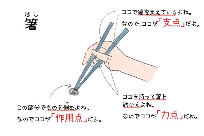 箸の力点・支点・作用点のイラスト