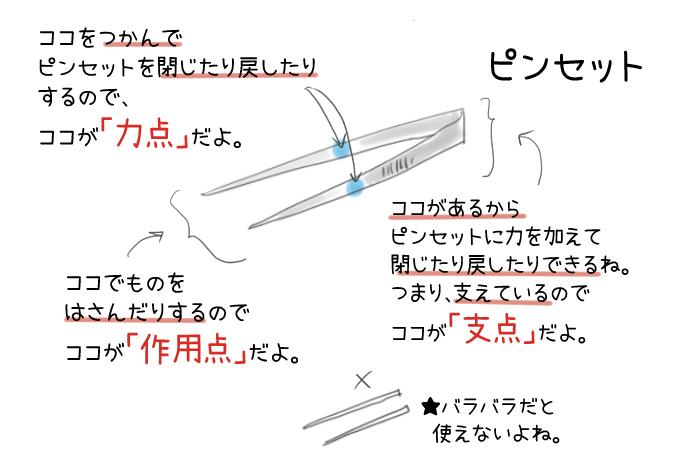 ピンセットの力点・支点・作用点のイラスト