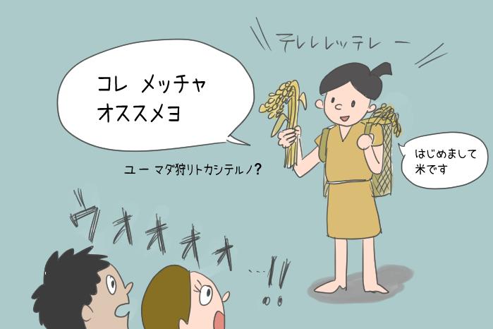米の伝来のイラスト