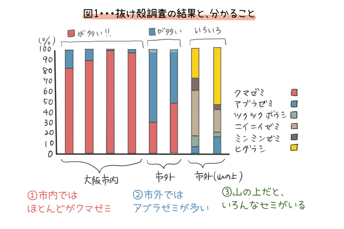 クマゼミ増加の原因を探るの抜け殻調査の結果のグラフのイラスト